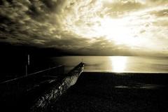 Out to Sea (SlinkyWhite) Tags: sea sky cloud sun beach monochrome canon dof hove wideangle groyne