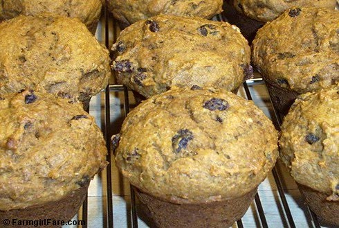 Spicy Pumpkin Pecan (or Walnut) Raisin Muffins