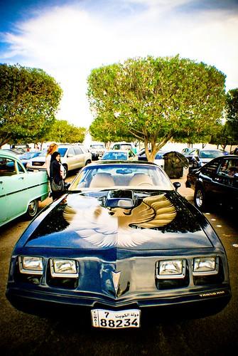 Classic Car (12)