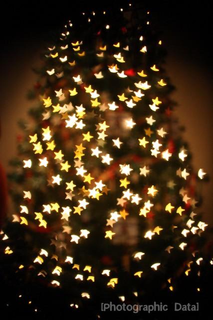 star tree 2