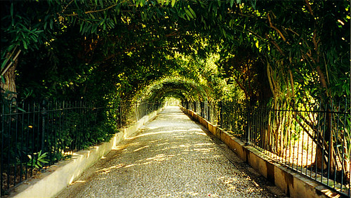 La ALHAMBRA and Generalife Walkway