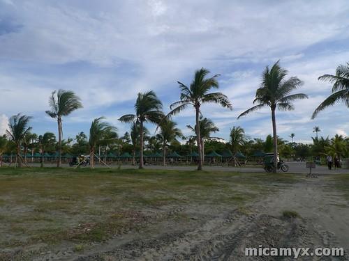 Lingayen65