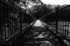 Bridge crossed on foot (k-o-m-a-n-e-k-o) Tags: 橋 川 神流川 藤岡 鬼石 群馬 神川 埼玉 木 水 nikon d750 bridge stream river tree water fujioka gunma kamikawa saitama japan early summer shadow 影