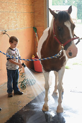 Will & Spirit (Montgomery Area Nontraditional Equestrians (MANE)) Tags: al mane pikeroad