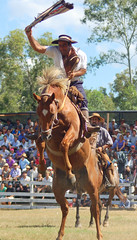 El alazn tostao (Eduardo Amorim) Tags: horses horse southamerica caballo uruguay cheval caballos cavalos pferde cavalli cavallo cavalo gauchos pferd pampa hest hevonen chevaux gaucho  amricadosul hst uruguai gacho  amriquedusud  gachos  sudamrica suramrica amricadelsur  sdamerika jineteada   americadelsud gineteada tacuaremb  americameridionale eduardoamorim iayayam yamaiay fiestadelapatriagaucha departamentodetacuaremb pampauruguaio pampauruguaya