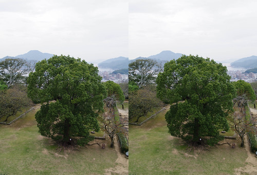 Honmaru, Uwajima castle, 3D parallel view