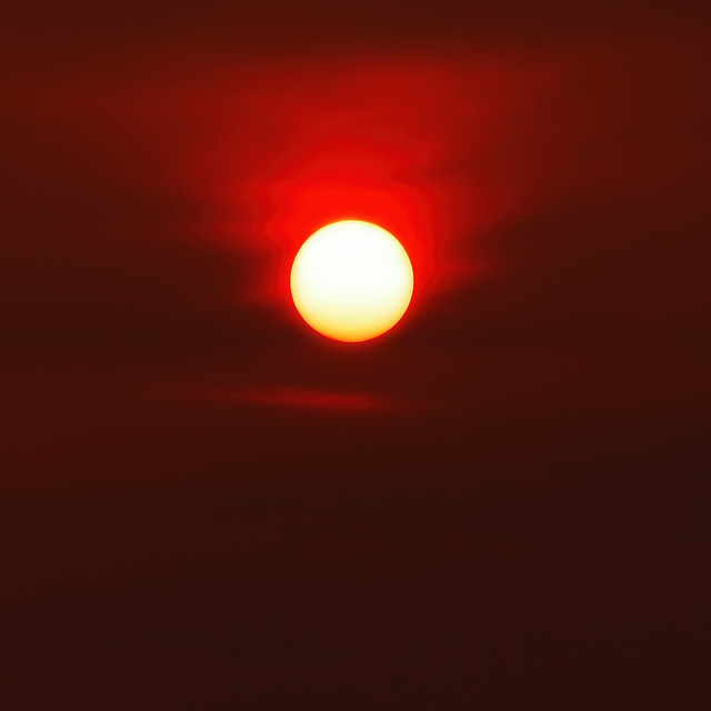 2010-08-01 Morning Sun