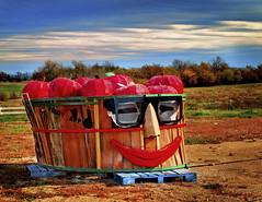 Apple, Anyone? (Uncle Phooey) Tags: autumn art folkart jonathan scenic cider explore missouri apples seymour ozarks bigsmile applefestival harvesttime bushels southwestmissouri marionville unclephooey mrapplehead abigbushel scenicmissouri