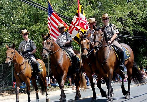 Maryland Horses