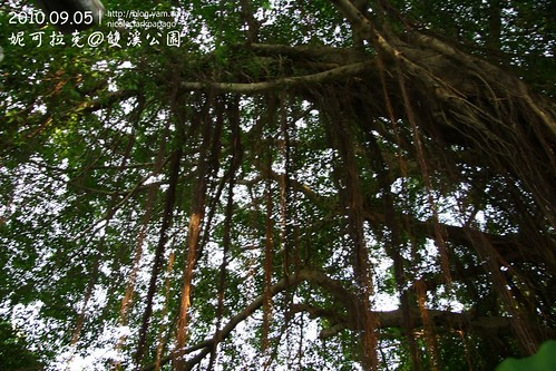 雙溪公園20100905-043
