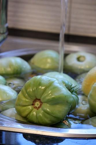 maraton ladja, zelene pomidore 085
