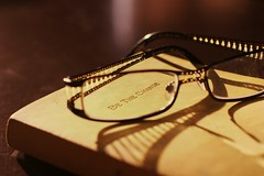 Inspiration (wingxstock) Tags: light sunset glasses golden bokeh journal gandhi inspirational bethechange