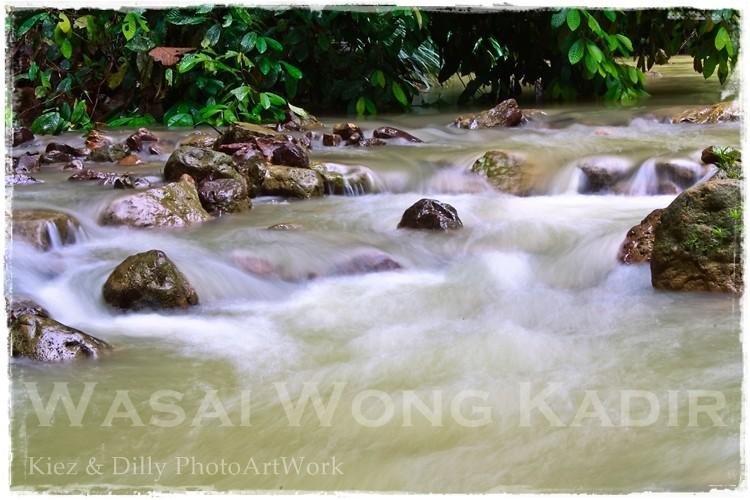 Wasai Wong Kadir