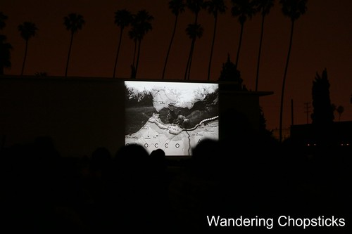 Cinespia Cemetery Screenings (Casablanca) - Hollywood Forever Cemetery - Los Angeles 7
