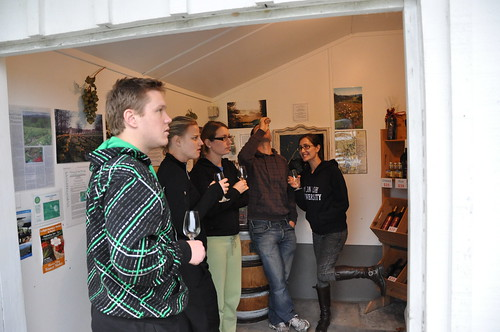 Wine tasting in a milk shed!