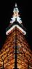 Spire (Aaron Webb) Tags: japan tokyo 日本 tokyotower 東京 東京タワー tokyojapan japanday2