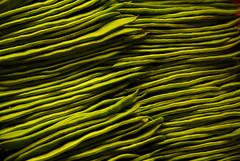 Judas Verdes / Green Beans (Victor H. Meza) Tags: barcelona travel espaa green vegetables digital beans spain nikon europa europe d200 verdes mercatdelaboqueria judas porotosverdes