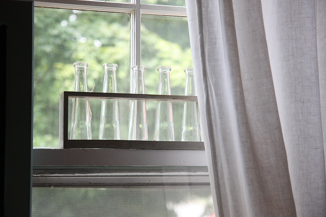 windowvases