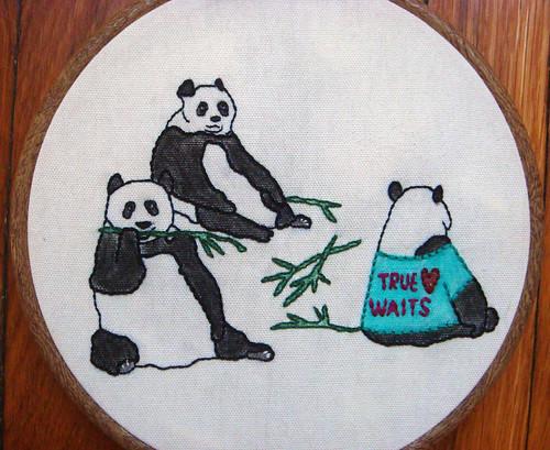 Celibate Pandas