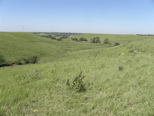 Over 3,500 acres of native grass was placed by Rod Moyer in a trust with the Kansas Land Trust through the Farm and Ranch Land Protection Program. This beautiful land will remain in agriculture forever.