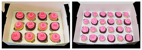 Tiara Zebra Print Cake Coordinating Cupcakes and Mini Cupcakes