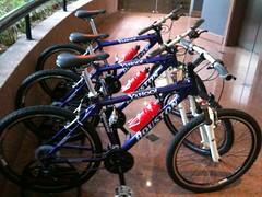 Bike Houston/Yahoo!