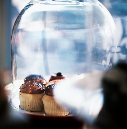 nikon - GRAB - cupcakes from baked-40090003