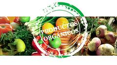 Los orgánicos se exportan cada vez más