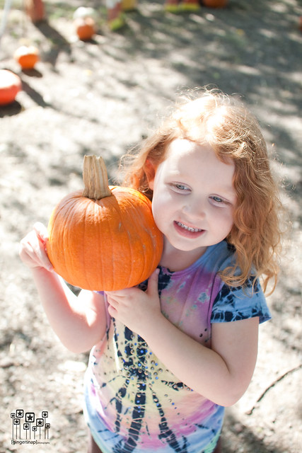 2010 pumpkin patch8