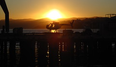 Sunrise Wellington Waterfront (Eyersh) Tags: sunrise harbour helicopter wellington silhoutte canong10