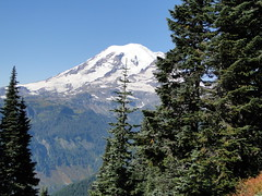 Rainer from Shriner Peak trail.