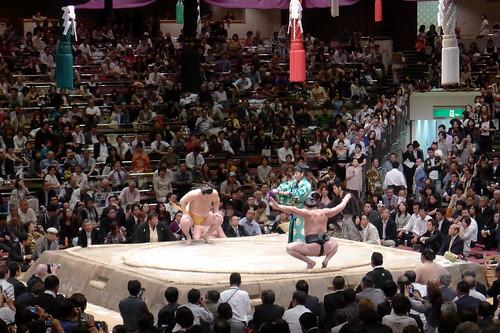 日馬富士 画像38