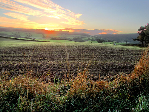 Sunrise across the fields.