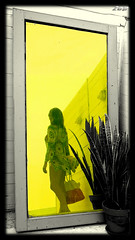 Yellow Mirror .....