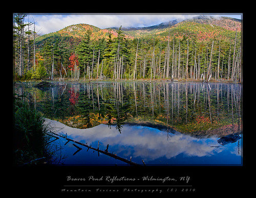 Beaver Pond Autumn Reflections - Wilmington, NY