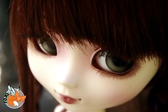 my little elf girl (foxifaeri) Tags: doll bjd pullip blanche foxi