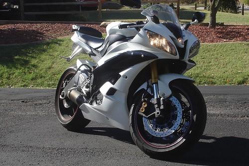 New rider    ZX6R vs R6 vs GSXR600 vs CBR600RR ? SRS