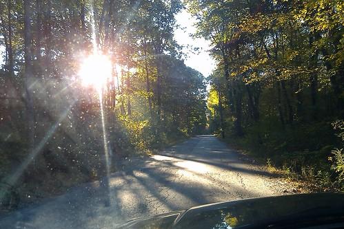 Day 4: Morning Light