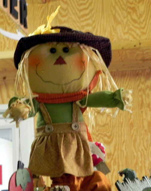 09-28-2010_Cute scarecrow