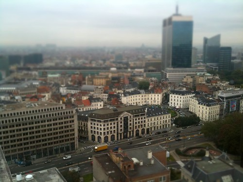 More tiny Brussels..