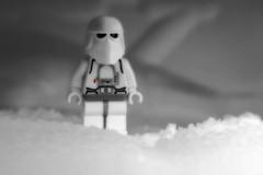 Anglų lietuvių žodynas. Žodis abominable snowman reiškia sniego lietuviškai.