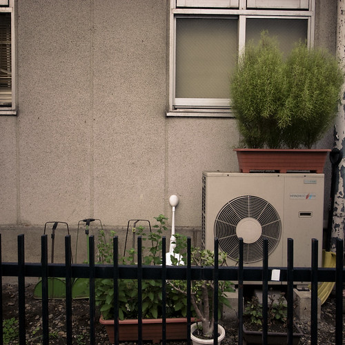 Urban Gardening with Air Conditioner