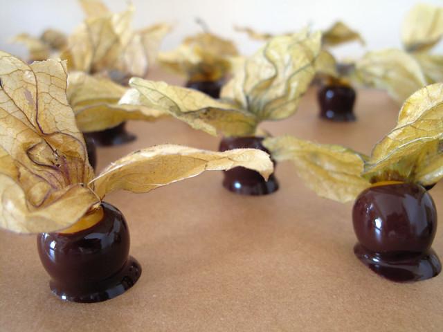 Alchechengi al cioccolato fondente