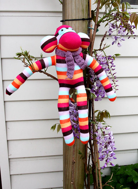 Bocky the sock monkey