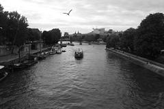 Un jour à Paris (BaRa-) Tags: amour amoureux couple fleuve lampadaire paris rivière rue seine vélo