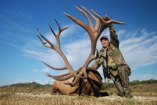 Elk 507