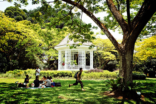 Afternoon at the gazebo, Singapore Botanic Gardens