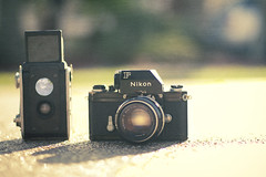 My New F'in Camera (StevanFane) Tags: old sun 3 slr classic film 35mm canon vintage ancient nikon dof florida bokeh oldschool teen f brownie fl nikkor nikonf oldie throwback 50mmf14 nikkors canonrebelxsi