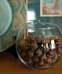 Autumn decor-acorns in a spherical vase (kizilod2) Tags: autumn fall glass bowl acorn decorating vase decor