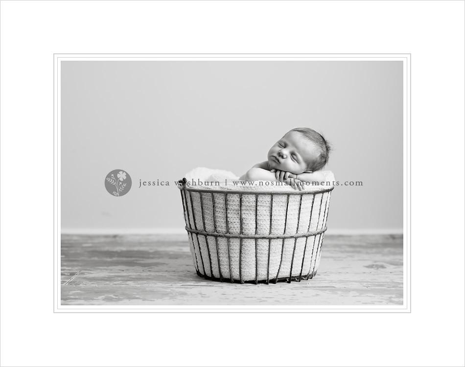 NY-newborn-photography